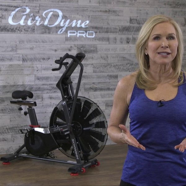 The Schwinn Airdyne Pro air bike